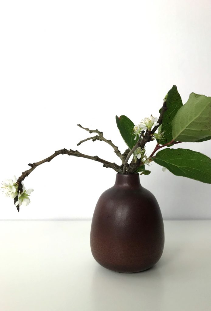 A small winter arrangement of flowering plum branches and salal leaves in a small ceramic bud vase.