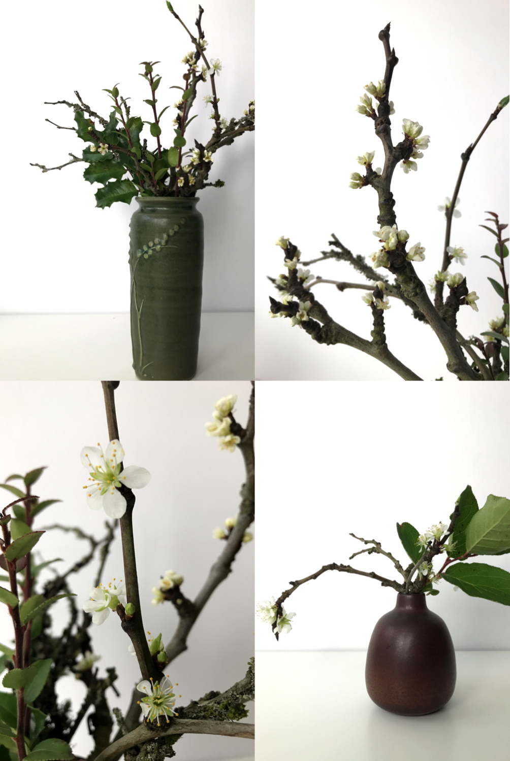 A compilation of four images featuring small winter arrangements of plum branches flowering with mahonia, huckleberry, and salal leaves.