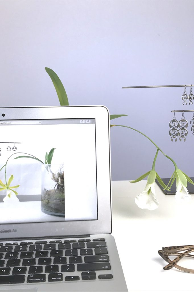 Orchid Encyclia mariae (formerly Euchile mariae) blooms on a desk in Wraptillion's studio behind a laptop, next to reading glasses and earrings from Wraptillion's Mechanical Garden collection.