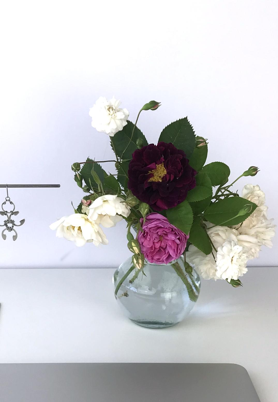 Small glass vase of old roses (Rosa alba, Rosa gallica officinalis, moss rose 'Capitaine John Ingram', & 'Felicite et Perpetue') in Wraptillion's studio.