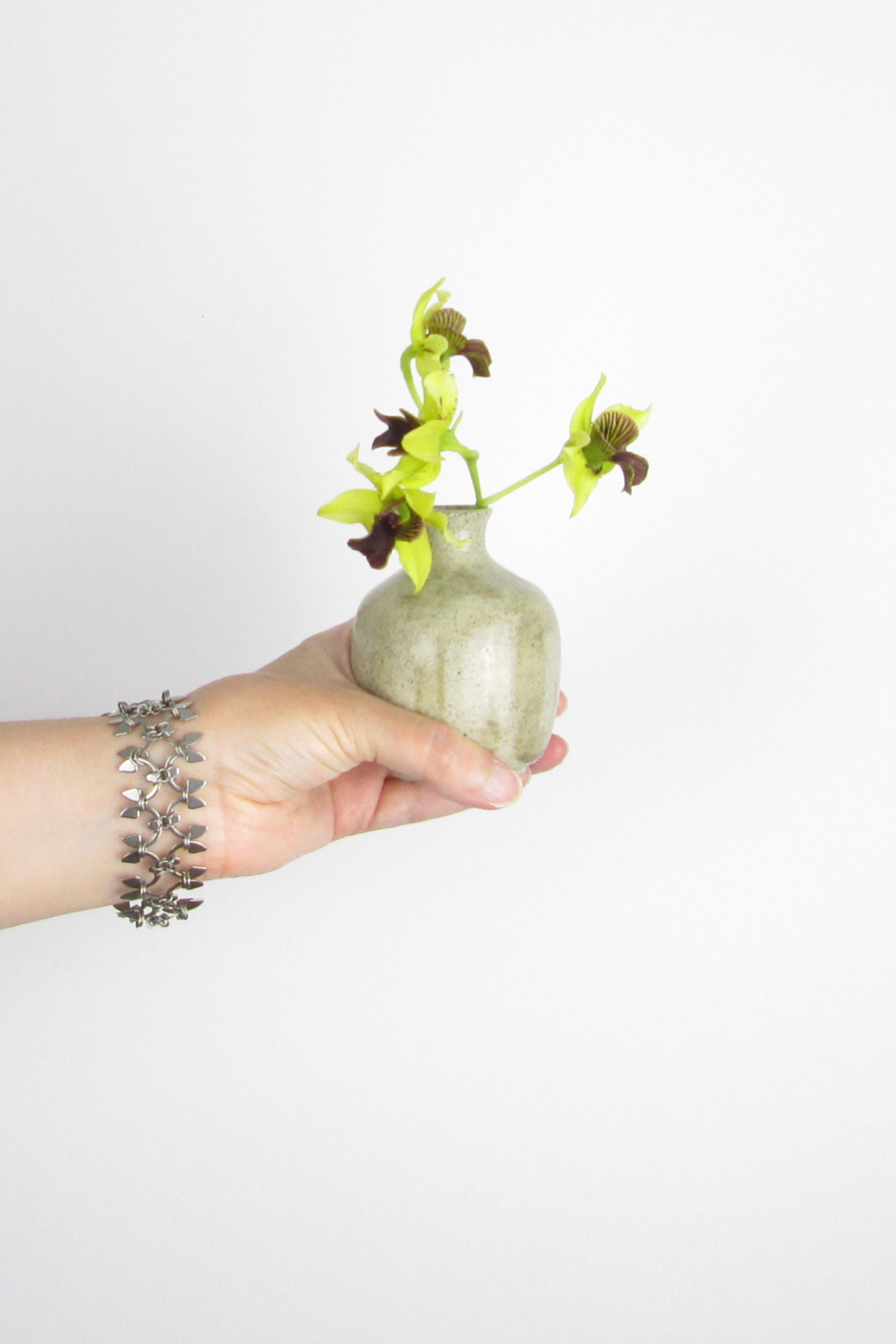 A hand holds a ceramic bud vase with orchid Dendrobium 'Green Flash', wearing Wraptillion's delicate, spiky modern chainmail Wisteria bracelet.